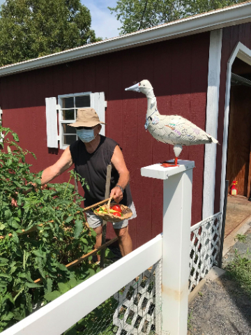 Gardening with Renners